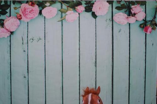 Holz - Türkisblau mit Rosen